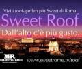 <!--:en-->Sweet Roof <!--:--><!--:it-->Sweet Roof <!--:--><!--:ru-->Sweet Roof <!--:-->